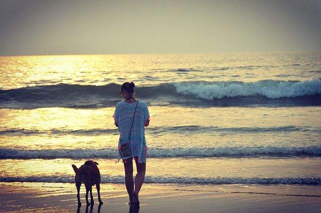 Top 5 Things to Do in Goa