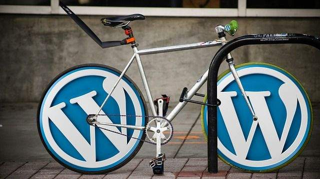Discover Various Uses Of WordPress For Your Needs And Explore The Importance Of Open Source Website Designing