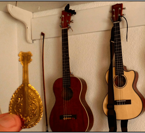 Types of Ukuleles You Need To Know