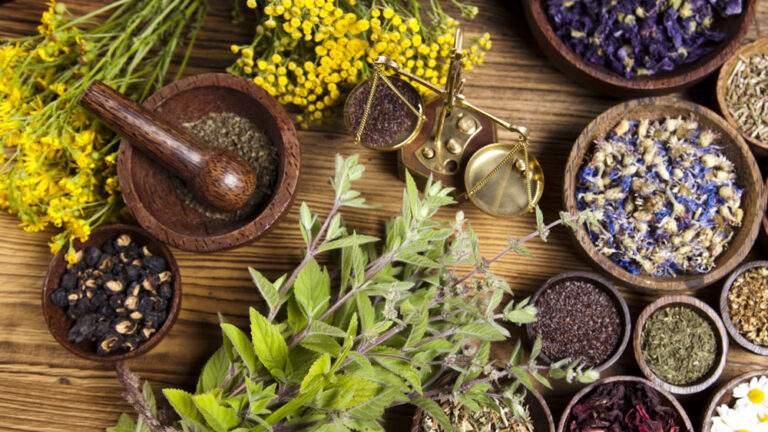 Kidney Stone – It's Causes & Ayurvedic Treatments