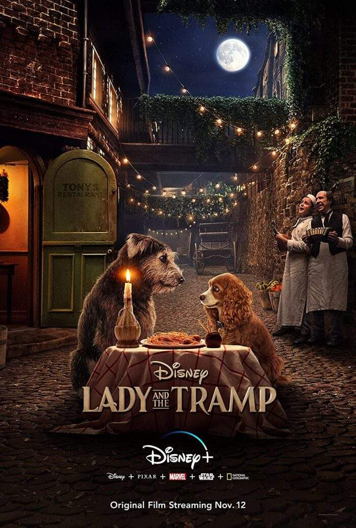 Mahshid Sadoughi – Lady and the Tramp
