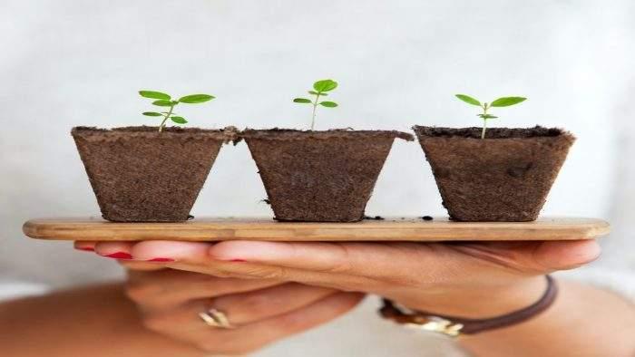 Ensuring Career Growth