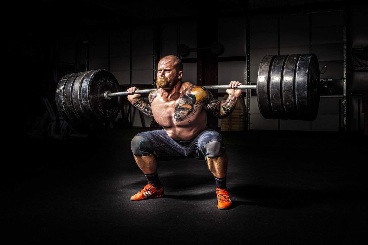 Building Muscle in Weight Lifting for Beginners