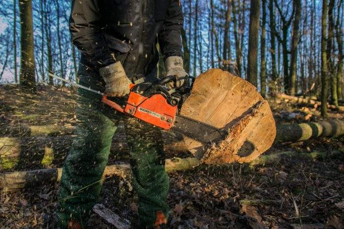 Types of Chain Saw