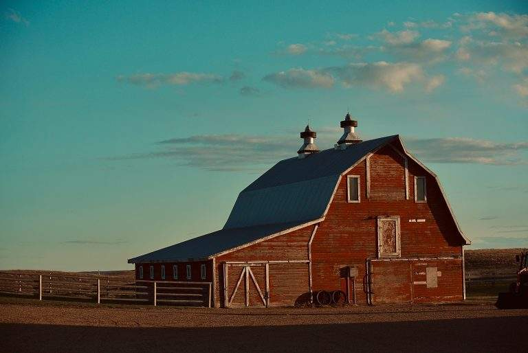 Traditional Wooden Shed's Limitations Overcome By Steel Buildings