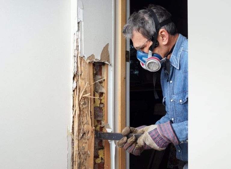 The Damages Bring Upon by Termites and Its DIY Solutions