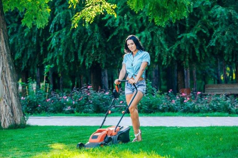 6 Types of Lawn Mower Before You Buy It